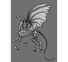 Thestral #2 with Gray Background Photographic Print