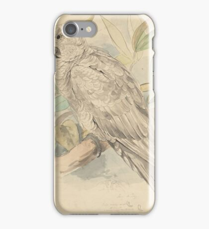 Sulphur-crested cockatoo -- graphite and watercolor drawing iPhone Case/Skin