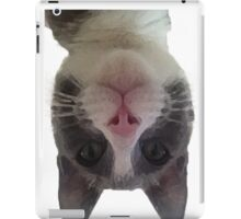 Crazy Gracie Upside Down Kitty iPad Case/Skin