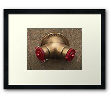 New York Water Stand Pipe Framed Print