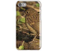 Juvenile Robin iPhone Case/Skin