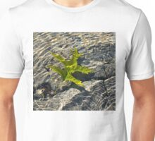 Submerged Beauty - Sunny Rainbows and a Jade Green Oak Leaf Unisex T-Shirt