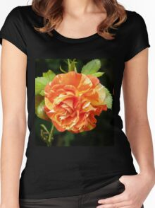 Multi Colored rose Women's Fitted Scoop T-Shirt