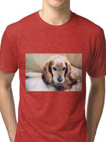 Stevey's Faux Fur Tri-blend T-Shirt