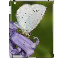 Holly Blue iPad Case/Skin