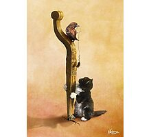 The Cat, the Bird and the Mouse Photographic Print