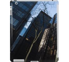 A Study in Contrasts - Downtown Toronto Miniature Park - Right iPad Case/Skin