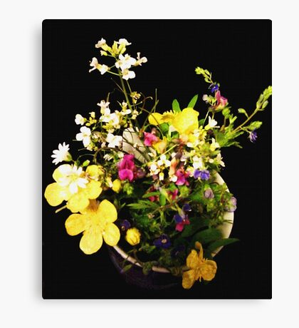 Wild and Beautiful Canvas Print