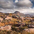 Loch Maree boulder field by Christopher Cullen