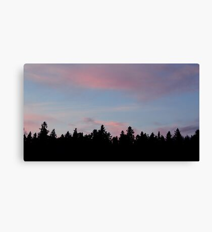 Silhouette of the Northern Nature Canvas Print