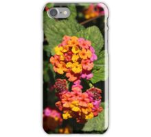 Yellow Purple and Pink Flowers iPhone Case/Skin