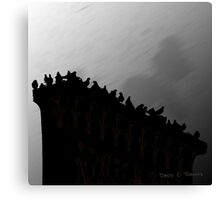 Pigeons On The Egypt 2011 Canvas Print