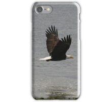 Eagle in Flight iPhone Case/Skin