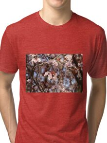 Almond Blossoms Tri-blend T-Shirt