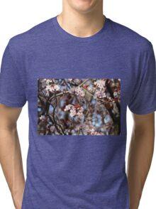 Almond Blossoms Tri-blend T-Shirt