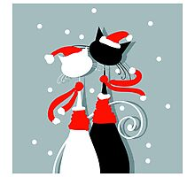 Amusing Christmas cats graphics Photographic Print
