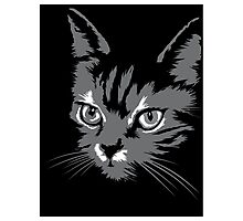 Black cat cartoon silhouetteCat silhouette cat silhouette Photographic Print