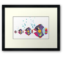 Cat fish Framed Print