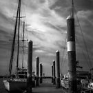 Study in Black and White.. Marina Perspective by Wendy Mogul