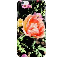 Tulips in the Sunlight iPhone Case/Skin