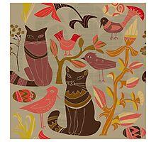 Cartoon decorative style birds cats Photographic Print