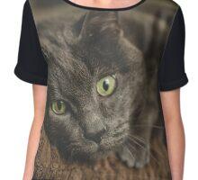 Cat lovers  Chiffon Top