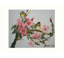Bird On Blossoms Art Print
