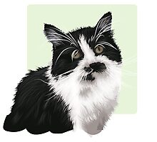 Hand drawn brown cat Photographic Print