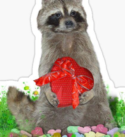 Valentine Raccoon Bandit Sticker