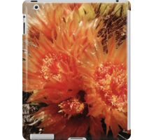 Blooming Barrels iPad Case/Skin
