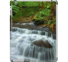 Lady Barron Creek cascades iPad Case/Skin