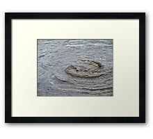 Maelstrom By Carp Framed Print