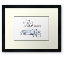 Babirusa Sketch @ Singapore Zoo Framed Print