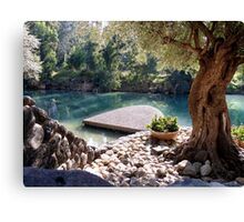 Beautiful River Jordan Canvas Print