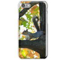 Arlington Squirrel iPhone Case/Skin