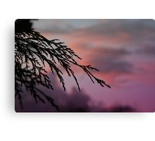 Drive by Sunsets Canvas Print