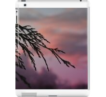 Drive by Sunsets iPad Case/Skin