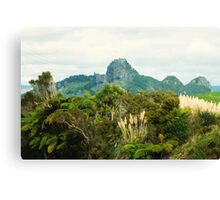 Mt Raratara    North Island New Zealand Canvas Print