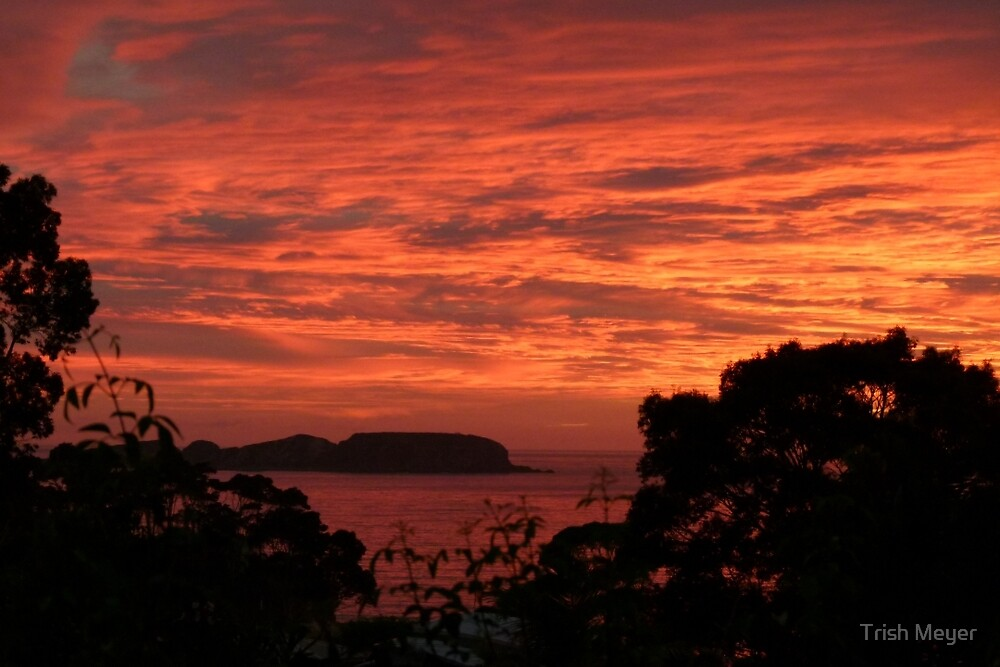 Good Morning - Australia Day 2012 by Trish Meyer
