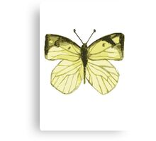 Lonely Butterfly Canvas Print