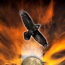 crow moon by redboy