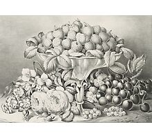 Fruit and flower piece - 1863 - Currier & Ives Photographic Print