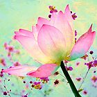 Watercolored Water Lily by Chanel70