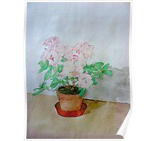 Watercolour Plant (Azalea) Poster