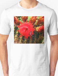 spider on cactus flower T-Shirt