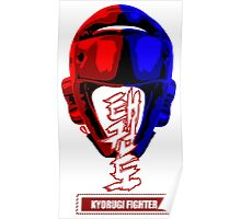 taekwondo kyorugi fighter korean martial art kick and punch Poster