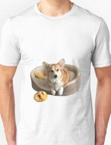 Corgi on his bed Unisex T-Shirt