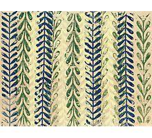 Vine Pattern - Nature Photographic Print