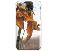 Dance in the Autumn Garden 1 iPhone Case/Skin