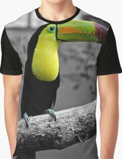 Colorful Toucan Graphic T-Shirt